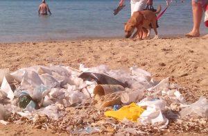 Mares contaminados