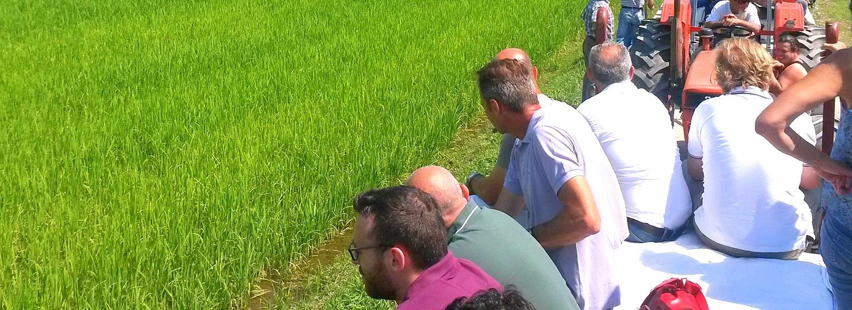 Buenas prácticas agrícolas con desarrollo local para el SO bonaerense