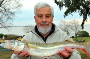 Pesca del pejerrey