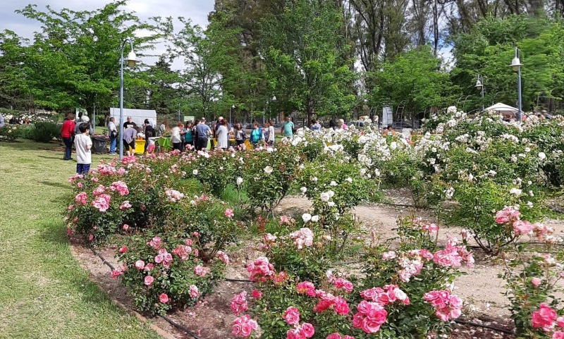Rosedal del Parque de Mayo