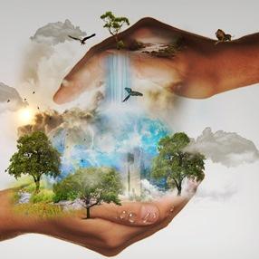 Taller virtual sobre cambio climático